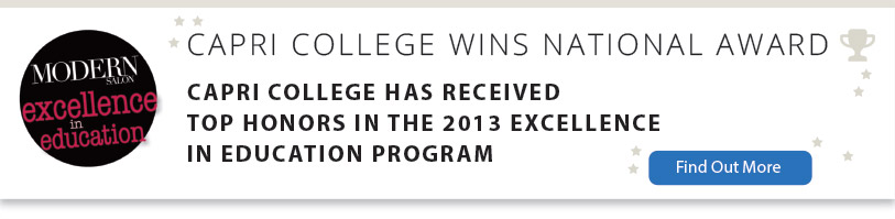 Capri College Top Honors 2013 National Excellence Award